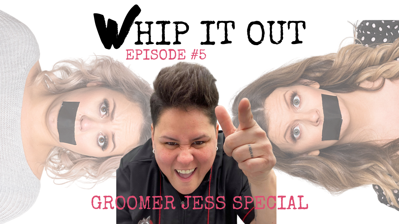 Whip It Out Podcast - The Whippet Media