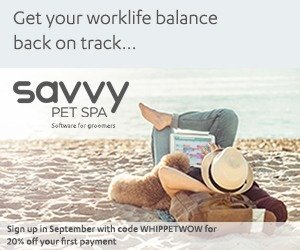 Savvy Pet Spa - The Whippet Media