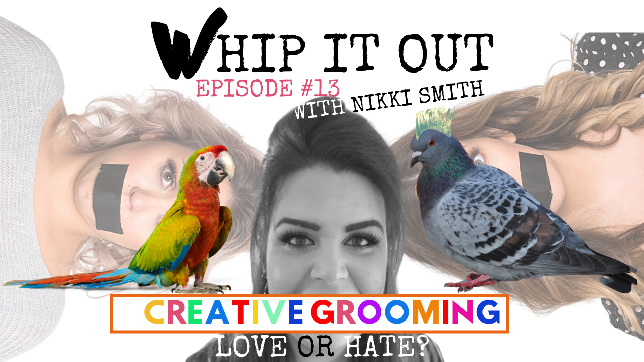 Whip it out podcast. nikki Smith. Episode 13