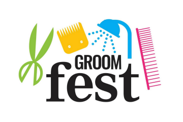 Groomfest. The whippet media. free education
