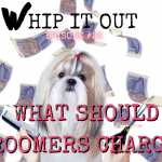 whip it out episode #22 pricing
